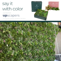 Spring Pink VistaFolia Color Box for Green Wall Panels