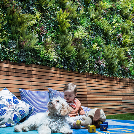 A Green Wall For Your Home - Artificial Living Walls for Your Home