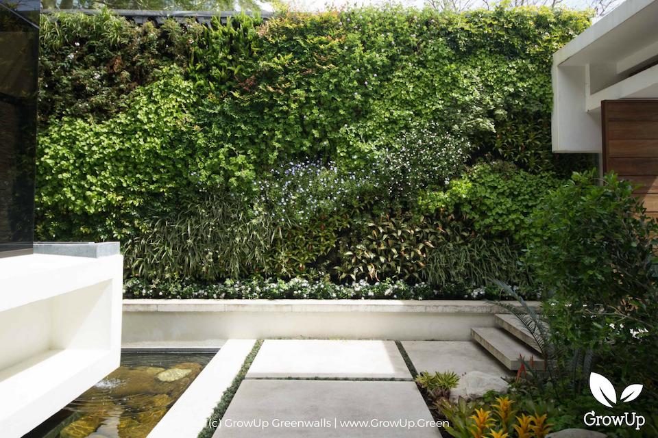 living-green-wall-construction